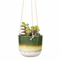 Mojave hængepotte - Ø11,6 cm - Grøn