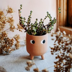 Terracotta potteskjuler - H10 cm - Little Leggy