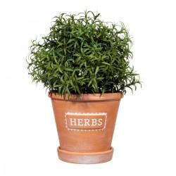 Terracotta potteskjuler - Herbs